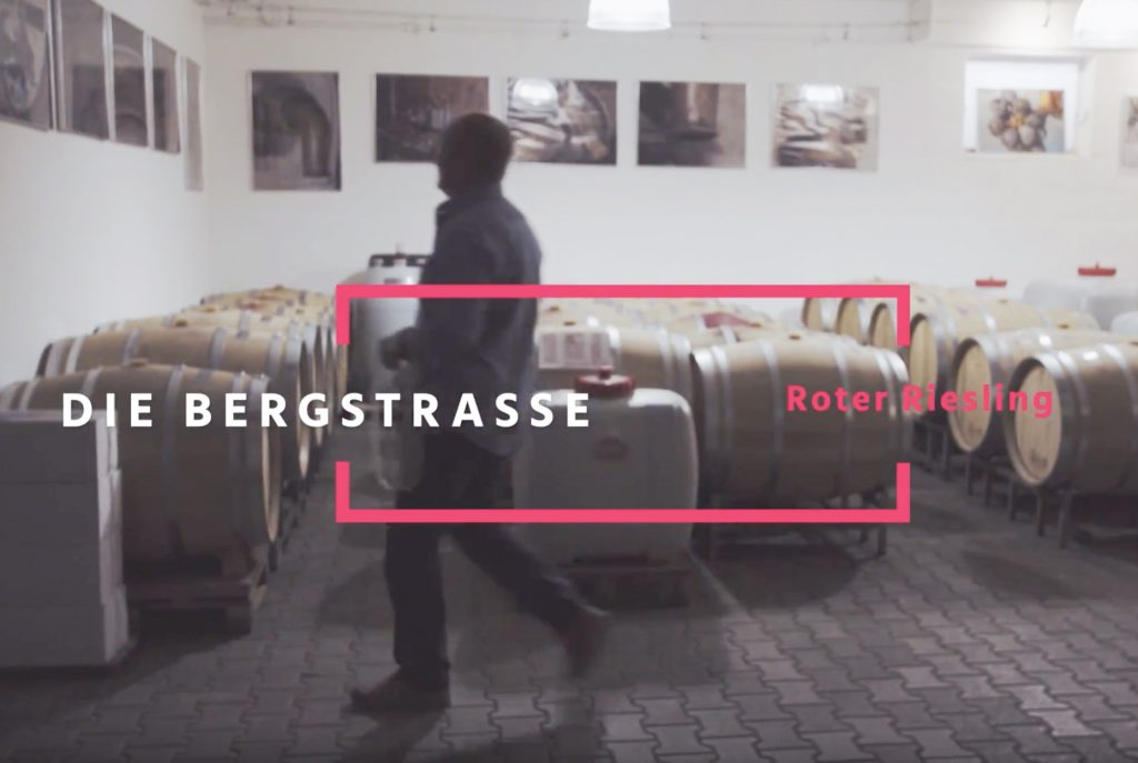 bergstrasse_roter riesling_Botschafter Hanno Rothweiler